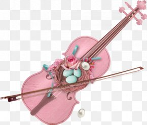 Musical Instruments - Violin Family Musical Instruments Cello PNG