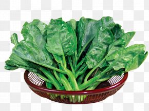 Bamboo Basket Of Kale - Chinese Broccoli Kale Spring Greens Food Romaine Lettuce PNG