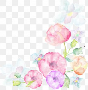 Watercolor Flowers Album - Watercolor Painting Flower PNG