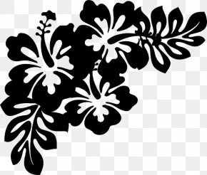 Clip Art Decorative Borders Borders And Frames Image PNG