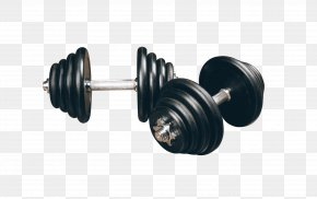 Fitness Barbell - Dumbbell Weight Training Bodybuilding Barbell Fitness Centre PNG