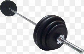 Barbell - Barbell Physical Exercise Deadlift Dumbbell PNG