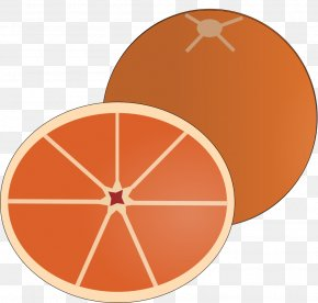Orange Slice - Test Computer Software Online And Offline System Management PNG