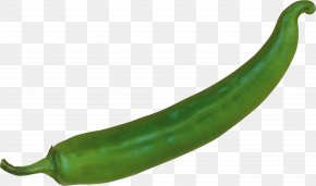 Pepper Image - Serrano Pepper Pasilla Cayenne Pepper Chili Pepper Peperoncino PNG