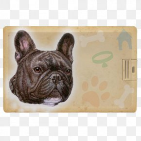 Puppy - French Bulldog Toy Bulldog Puppy Dog Breed PNG