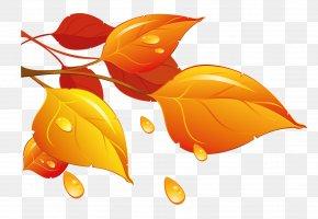 Transparent Autumn Leaves Clipart - Autumn Leaf Color Clip Art PNG