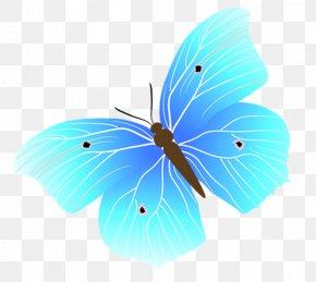 Blue Butterfly - Blue Euclidean Vector PNG