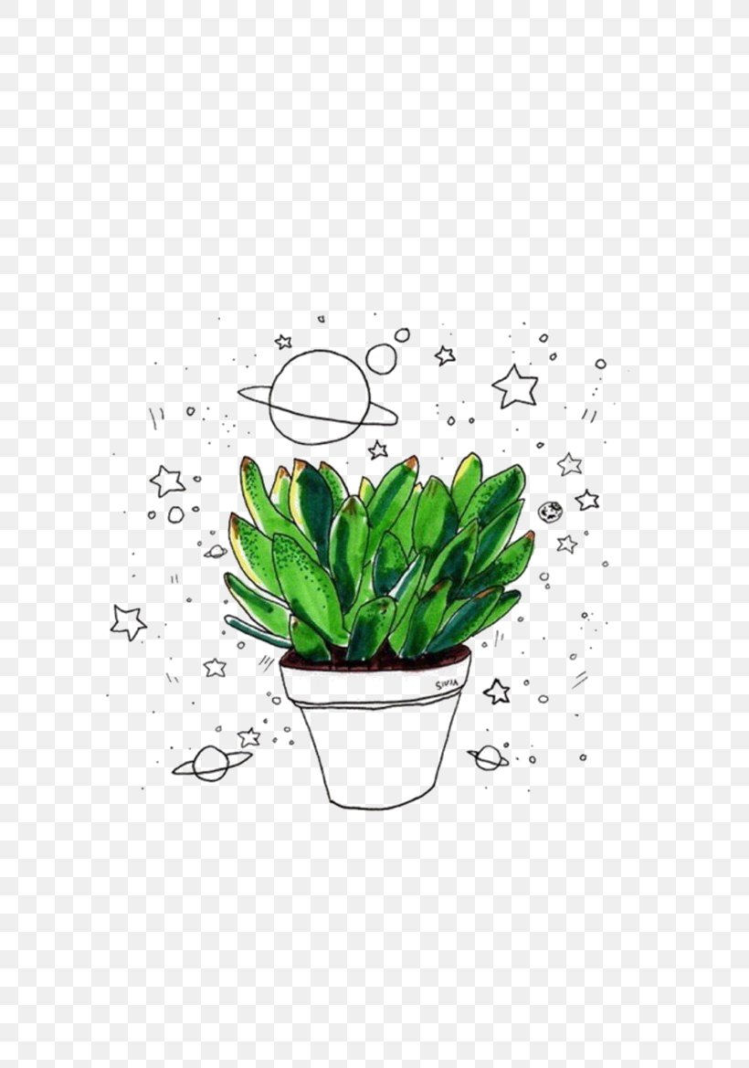 Cactaceae Drawing Succulent Plant Png 658x1169px Cactaceae Aesthetics Art Drawing Fact Download Free