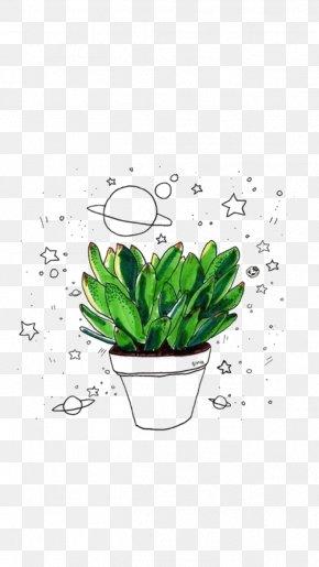 Hand-painted Plants - Cactaceae Drawing Succulent Plant PNG