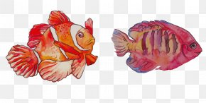 Watercolor FISH Painting - Watercolor Painting Clownfish PNG