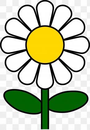 Flower Clip Art - Common Daisy Clip Art PNG