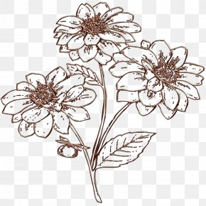 Plant Stem Herbaceous Plant - Bouquet Of Flowers Drawing PNG