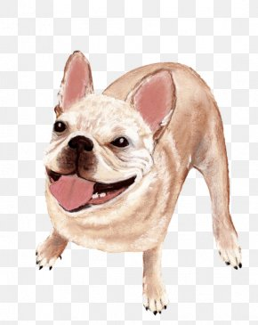 Happy Dog - French Bulldog Toy Bulldog Puppy Dog Breed Companion Dog PNG
