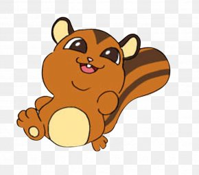 Fat Squirrel - Squirrel Cartoon PNG