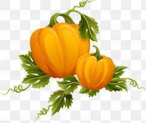 Pumpkin - Royalty-free Photography Clip Art PNG
