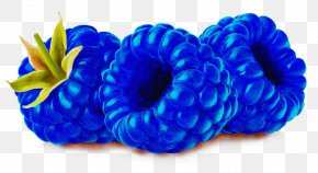 Shoe Hair Tie - Blue Cobalt Blue Aqua Turquoise Electric Blue PNG