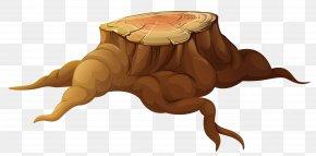 Tree Stump Picture - Tree Stump Trunk Clip Art PNG