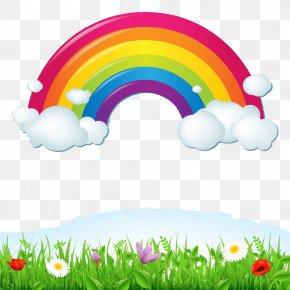 Seven Color Rainbow - Rainbow Cloud Euclidean Vector Sky Illustration PNG