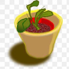 Flower Pot Image - Flowerpot Clip Art PNG