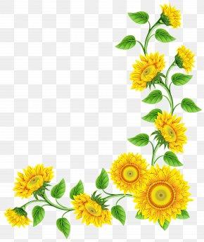 Flower Download Image Pot Marigold PNG