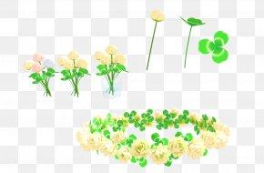 Flower - Floral Design Flower Crown Wreath MMD PNG