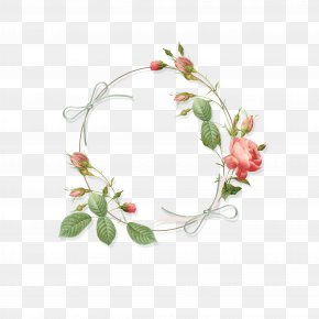 Rose - Clip Art Rose Flower Borders And Frames Floral Design PNG