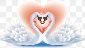 Swan Pattern - Black Swan Bird Heart Clip Art PNG
