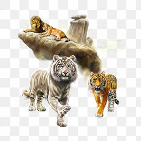 Lion Tiger Collection - Tiger Lion Watercolor Painting Cat PNG