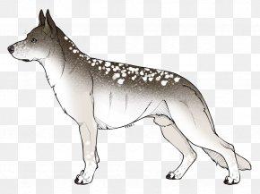 Lava Wolf Adoptable - Czechoslovakian Wolfdog Saarloos Wolfdog Dog Breed Dingo /m/02csf PNG
