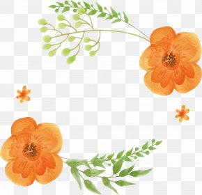 Orange Watercolor Flower Title Box - Watercolor: Flowers Orange Watercolor Painting PNG