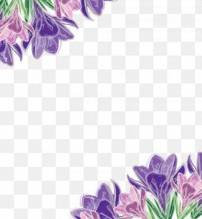 Vector Floral Decoration - Purple Euclidean Vector Flower Violet PNG