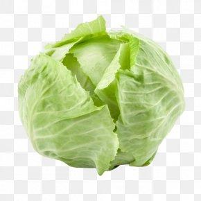 Cabbage - Organic Food Vegetable Biokistl Potato PNG