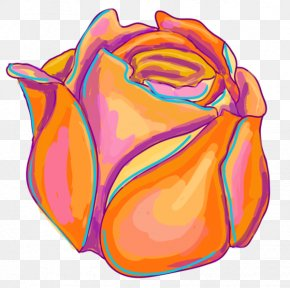 Drawing Flower - Flower Drawing PNG