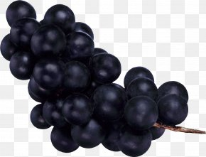 Grape Image - Common Grape Vine Fruit PNG