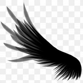 Wings - DeviantArt Wing Clip Art PNG