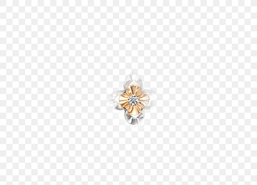 Body Piercing Jewellery Human Body Pattern, PNG, 591x591px, Body Piercing Jewellery, Body Jewelry, Human Body, Jewellery Download Free