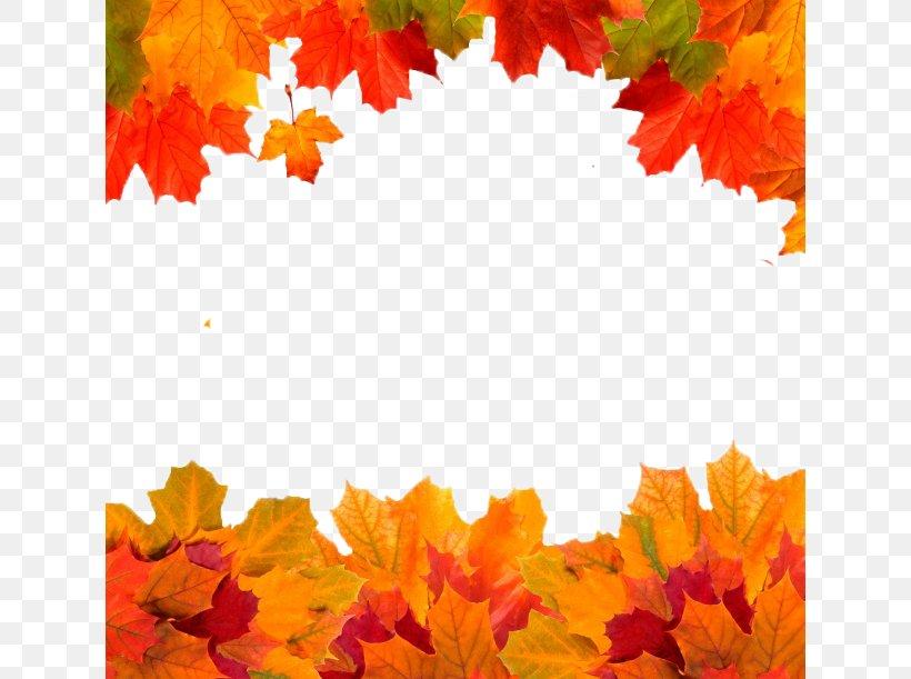 Autumn Leaves Golden Autumn Owasso Leaf, PNG, 630x611px, Autumn, Autumn Leaf Color, Color, Leaf, Maple Leaf Download Free
