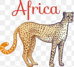 Vector Cartoon Cheetah - Cheetah Giraffe Wild Boar PNG