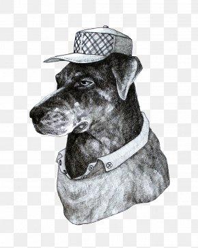 Black And White Hat Puppy Illustration - Black And White Designer Illustration PNG