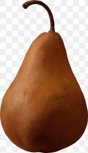 Brown Pear Image - Pear Fruit Computer File PNG