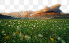 Beautiful Grassland PNG