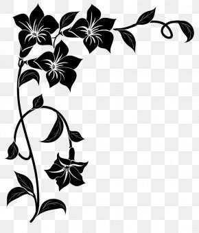 Picture Frames Black & White Photography Paintbrush PNG