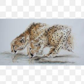 Cheetah - Cheetah Leopard Jaguar Hare Lion PNG