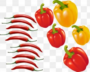 Red Chili Pepper Vector Material Pepper - Bell Pepper Chili Pepper Tomato Euclidean Vector PNG