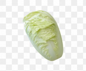 Vegetable Cabbage - Napa Cabbage Cauliflower Vegetable PNG