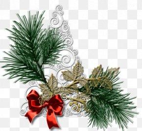 Santa Claus - Santa Claus Christmas Day Clip Art Christmas Image PNG