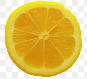 Orange Background tree - Sweet Lemon Rangpur Orange Lime PNG