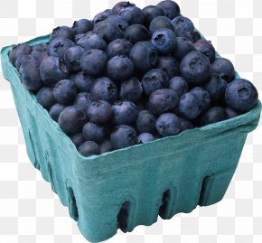Blueberries - Blueberry Juice Muffin Fruit Salad PNG