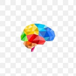 Creative Brain - Brain 3D Computer Graphics Polygon Illustration PNG