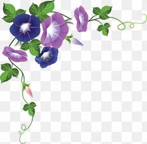 Flower - Paper Borders And Frames Flower Clip Art PNG